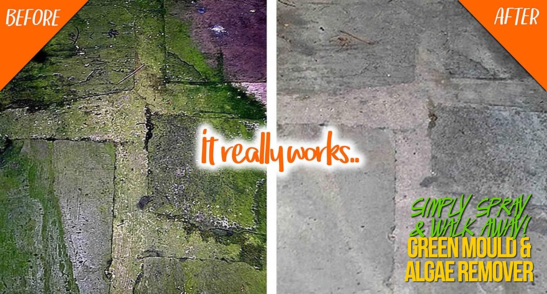 Patio Brick Stone Roof Paving Slabs Green Mould Algae